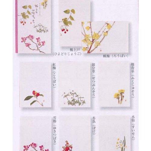 外山康雄 画 折々の花たちはがきセット 第三集(早春)30-529