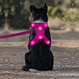 Domi LED Dog Harness, USB Rechargeable Glowing Pet Harness, Comfortable Mesh Light Up Dog Vest for Your Large Dogs(L,Pink)