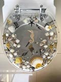 Heavy Duty Comfort Toilet Seats with Seahorse Seashells Cover Acrylic Seats (New Sea Clear'17 INCH)