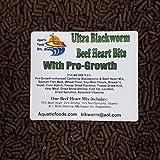 Aquatic Foods Inc. S&B PRO-Growth Blackworm/Beef...