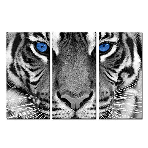 Kreative Arts Large 3 Pieces Canvas Prints Wall Art Blue Eyed Tiger Poster Printed On Canvas Animal Pictures Painting Giclee Artwork Framed for Office Home Decorations 16x32inchx3pcs (Blue Eye)