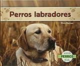 Perros labradores (Perros / Dogs)