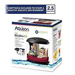 the 12 best betta fish tanks reviews betta fish care guide in 2019