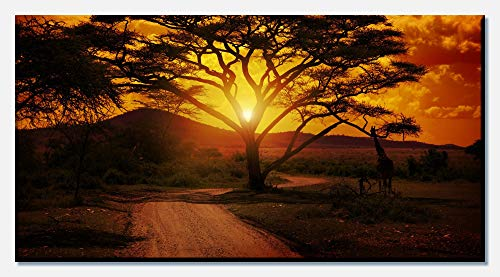 wandmotiv24 Leinwandbild Afrika Sonnenuntergang 100x50cm (BxH) Panoramabild Foto-Leinwand Wandbild Foto-Geschenke M0001