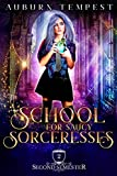 School For Saucy Sorceresses (Misty's Magick and Mayhem Book 2) (English Edition)
