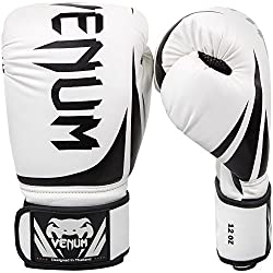 Venum Challenger 2.0 Punching and Boxing Gloves