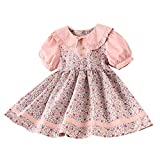 Blue Maternity Dress for Baby Shower Toddler Baby Kids Girls Peter Pan Collar Floral Flowers Princess Dress Clothes