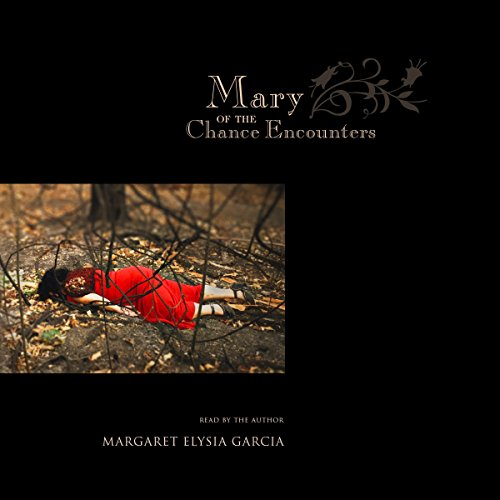 Mary of the Chance Encounters cover art