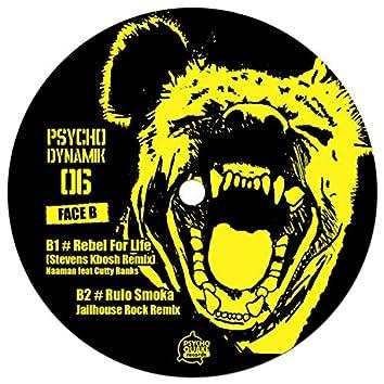 Psychodynamik 06