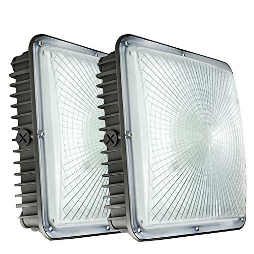 70W LED Canopy Lights,8400 Lumens 5500K White,9.5' x 9.5',120V 277V for Gas Station, Gym, Warehouse, Garage,Backyard (2-Pack 70W)
