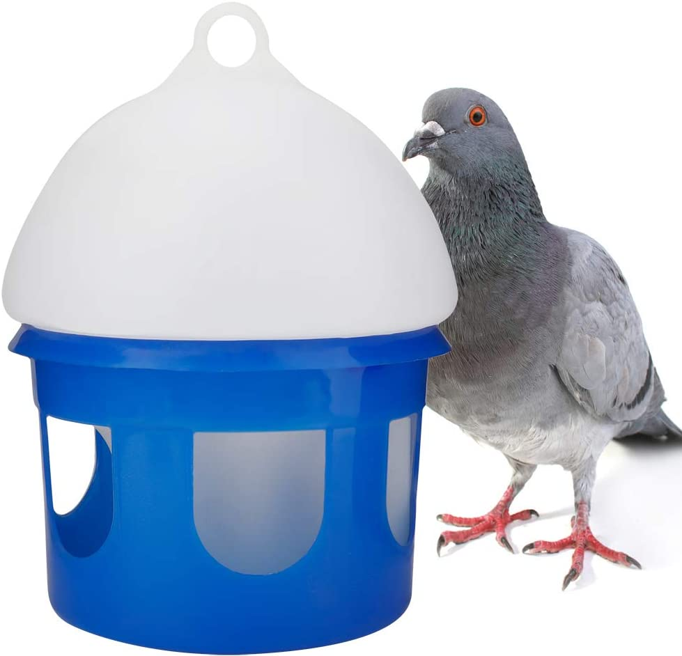 Large Capacity Automatic Bird Pigeon Wate Max 46% OFF Dispenser Water Albuquerque Mall Feeder