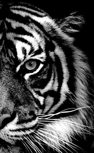 Rhpnyi Tierbilder Zebra, Giraffe DIY 5d Diamant Malerei Wanddekoration 45x55CM
