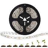 TORCHSTAR 16.4ft LED Plant Grow Strip Light, SMD5050 IP65 Waterproof Full Spectrum (Red:Blue=4:1) String Light for Indoor Planting, Greenhouse, Gardening, Veg Grow, DC 12V