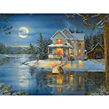 5D Diamond Painting by Number Kits Full Drill for Adults Kids,Craft Rhinestone with Diamonds Set Art...
