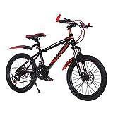 FUFU Bici de montaña de Velocidad Variable de 24 Pulgadas y a Prueba de Golpes con Cesta de Almacenamiento de Seguridad Bicicleta para niños para niños de 10-16 años de Edad