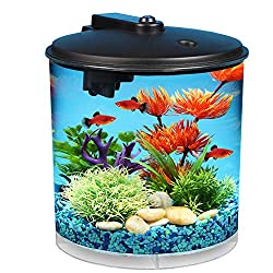 10 Best Goldfish Filters