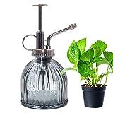 Cyleibe Pulverizador para plantas, botella de cristal, flores, agua en spray, estilo vintage, pulverizador de plantas, con bomba, cristal decorativo (gris)