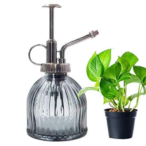 Pulverizador Plantas Vintage Marca Cyleibe