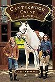 Jealousy (17) (Canterwood Crest)