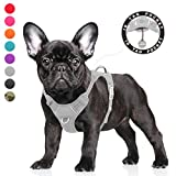 BARKBAY Dog Harness No Pull Dog Harness Adjustable Outdoor Dog Vest 3M Reflective Air mesh Soft Vest Front/Back Leash Clips with ID Tag Pocket Easy Control for Medium Large Breed Dogs
