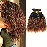 Feelgrace Hair Ombre Kinkys Curly Human Hair Extensions Brazilian...
