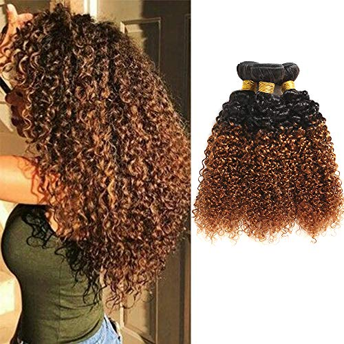Feelgrace Hair Ombre Kinkys Curly Human Hair Extensions Brazilian Curly Hair 3 Bundles 2 Tone Ombre Hair Weave 1b/30 Blonde Color (8 10 12)