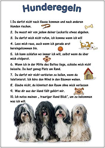 Merchandise for Fans Blechschild/Warnschild/Türschild - Aluminium - 20x30cm - - Hunderegeln - Motiv: Hund Tibet Terrier - 01