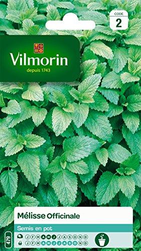 Vilmorin 5877046 Mélisse officinale, Vert, 90 x 2 x 140 cm