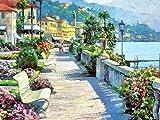 5D DIY diamante pintura jardín punto de cruz diamante bordado ciudad paisaje completo cuadrado redondo taladro regalo de Año Nuevo A2 50x70cm