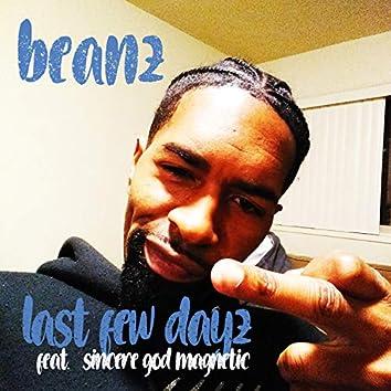 Last Few Dayz (feat. Sincere God Magnetic)