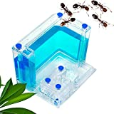 EnweHiko Ant Workshop with Night Vision Led lights, Ant Farm Castle Accessories Set with Gel Pet Insect Feed...