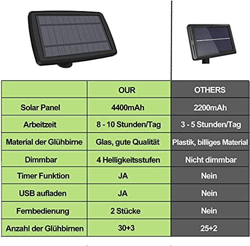 Dubistda solar_33_birnen