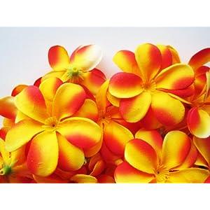 (24) Yellow Red Hawaiian Plumeria Frangipani Silk Flower Heads – 3″ – Artificial Flowers Head Fabric Floral Supplies Wholesale Lot for Wedding Flowers Accessories Make Bridal Hair Clips Headbands Dress