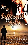 In A Different Light (Gay Romance Novella) (English Edition)