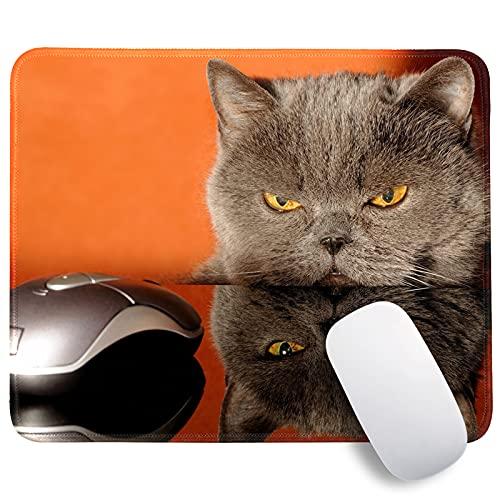 Gaming Mousepad, Mouse Pad, Mauspad Motiv Tiere, Office Mauspad Klein Motiv Katze Maus, Mousepad Rutschfeste Gummibasis, Gaming Mauspad Waschbar für PC, Laptop, Home Office Büro 300 mm x 250 mm x 3 mm
