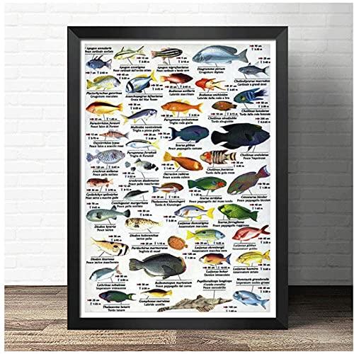 DLFALG Póster de diagrama de referencia de vida marina, arte de pared modular, impresión de imagen, educación, ciencia, pintura en lienzo, sala de estar, decoración del hogar, 50x70cm sin marco