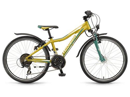 Unbekannt Winora Rage 24 Kinder Mountain Bike 2018 (32, Lime/Grün/Weiß Matt)