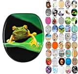 WC Sitz, viele schöne WC Sitze zur Auswahl, hochwertige und stabile Qualität aus Holz (Frosch grün)