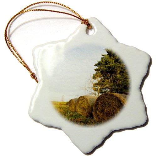 3dRose ORN 90847_ 1Heu Ballen auf Einer Farm in Groton, ma-us22jmo0147-jerry und Marcy monkman-Snowflake Ornament, 3Zoll, Porzellan