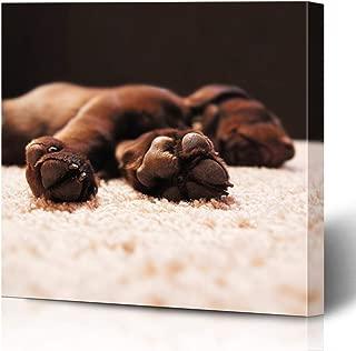 Ahawoso Canvas Prints Wall Art Printing 16x12 Retriever Cute Chocolate Lab Puppy Sleeping House Animals Wildlife Labrador Interiors Carpet Dog Painting Artwork Home Living Room Office Bedroom Dorm