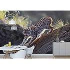 YCRY-壁紙ロックオオヤマネコ捕食者クリケット-動物-壁の壁画-壁の装飾-ポスター画像の写真-HDプリント-モダンな装飾-壁画-200x140cm