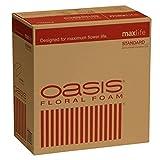 Oasis Standard Floral Foam Bricks - Case of 48 - MaxLife Floral Foam - Wet Floral Foam Bricks for Flower Arranging