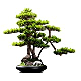 Bonsai Artificial Planta verde artificial Bonsai Belleza de pino Árbol de simulación interior Planta grande planta en maceta Adecuado para el hotel Paisaje Decoración de escritorio Fake Plant Decorati