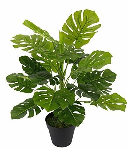 Flair Flower Künstliche Splitphilo-Pflanze im Topf Monstera Kunst-Pflanze Seidenblumen Real Touch grün Kunstpflanzen künstliche Pflanzen Splitphilopflanze Dekopflanze groß 53 cm