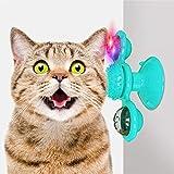 AUCHIKU Windmühle Katzenspielzeug, Plattenspieler Katzenspielzeug mit Katzenminze und Glühender Ball interaktives katzenspielzeug Kratzen Tickle Cats Haarbürste Katzenbiss Puzzle katzenspielzeug-Blau