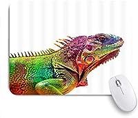 マウスパッド カメレオンカラフルトカゲ ゲーミング オフィス おしゃれ がい りめゴム ゲーミングなど ノートブックコンピュータマウスマット