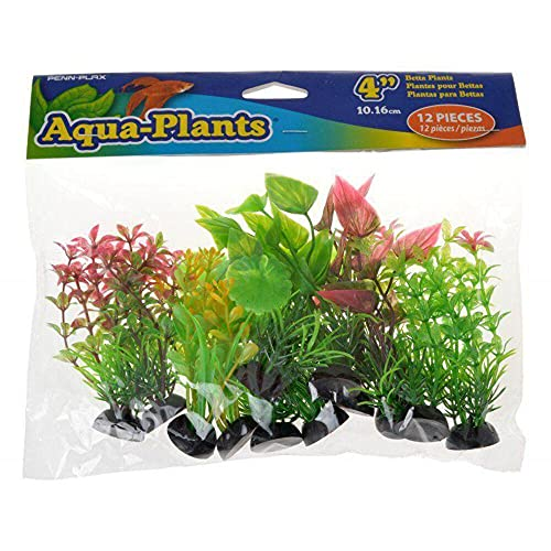 Penn-Plax Aqua-Plant Plante Betta Naturelle 10 cm