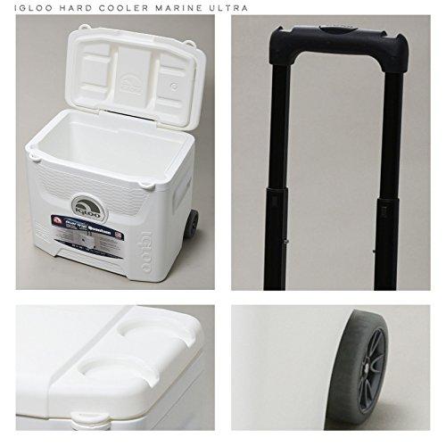 Igloo Products Corporation 00045929Marineblau Ultra Quantum Roller Cooler, 28Viertel