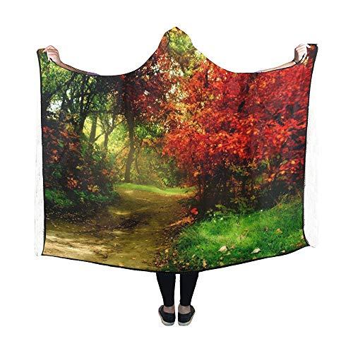 Yushg Couverture à Capuche Trees Autumn Park Blanket 60x50 Pouces Wrap à Capuche Comfotable