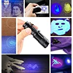 UV Torch,Black Light Torches Small Hand Held Ultraviolet 395nm LED Flashlight,Pet Dogs & Cats Urine Detector, UV Lamp for Fluorescent Agent Inspection,1 x AA Battery Included 12